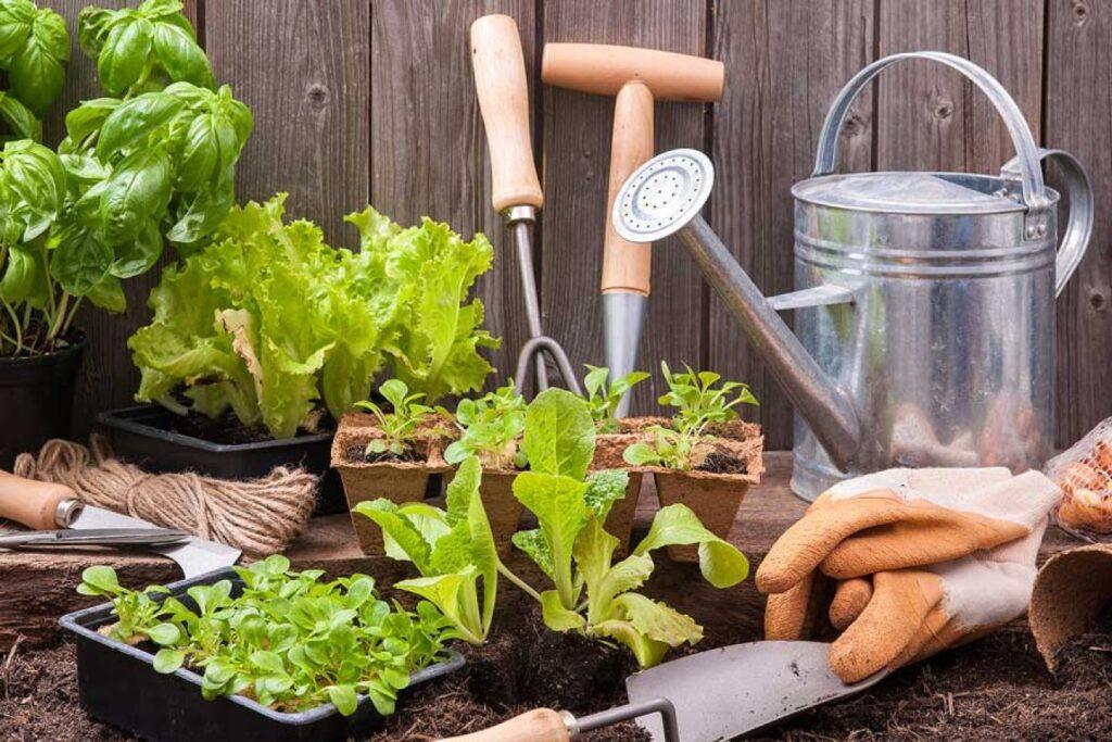 Hoe kinderen tuinieren te leren plus een selectie van seizoensgebonden tips and list of kindergarten sight words